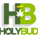 28g – BB Pop (Hybrid) AA+++